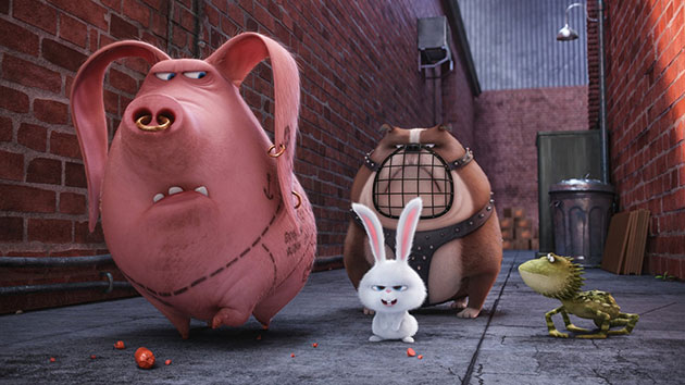 Secret Life of Pets Movie Still 1