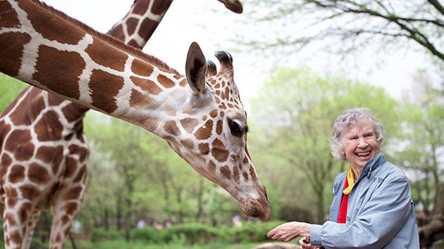 The Woman Who Loves Giraffes Movie Still 1