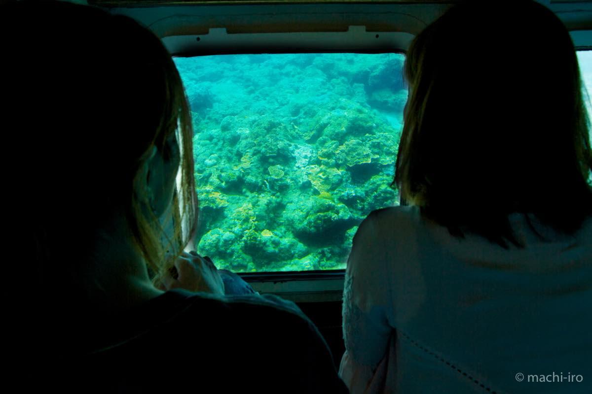 水中観光船せと グラスの向こう