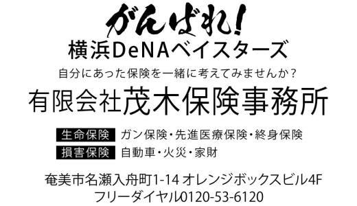 We Love 横浜DeNAベイスターズ #43