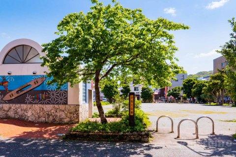 奄美大島中心市街地の公園 7