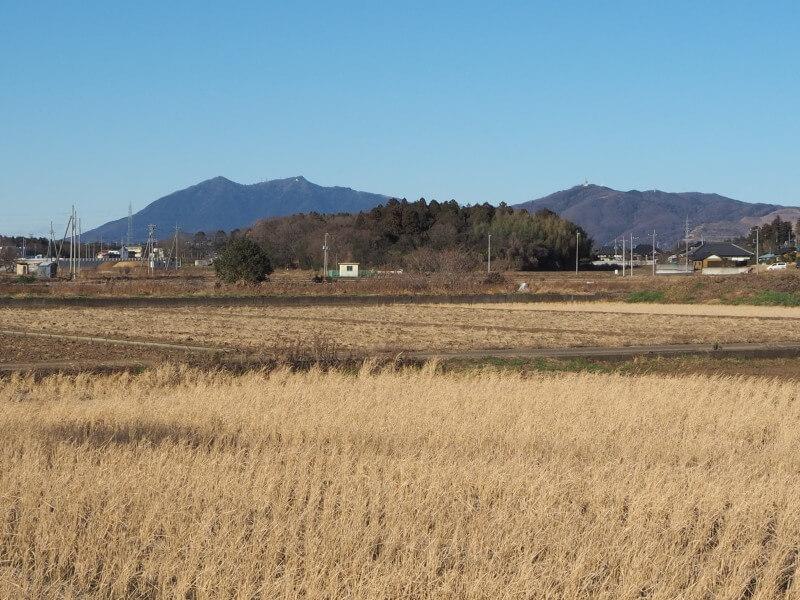 桜地区から見た筑波山