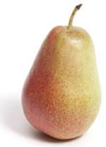 pear_forelle.jpg