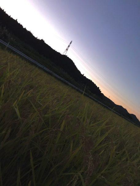 矢祭の夕暮れ(東舘 女性)