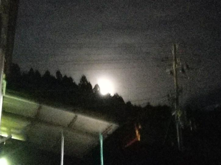 東の空からまぶしいお月さん登場!(東舘・女性)