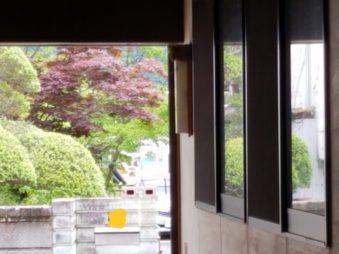 窓鏡(東舘・男性)