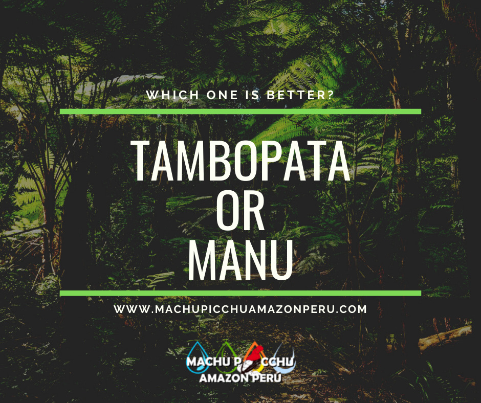 TAMBOPATA OR MANU