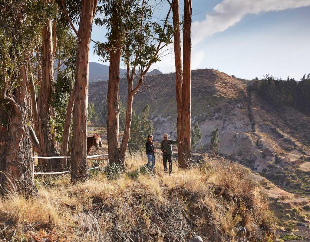 Belmond Las Casitas Colca Canyon