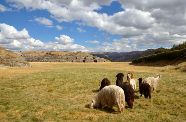 Cultura andina: o melhor roteiro para conhecer a origem Inca