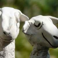 Aufmerksames Schaf - Zaunhocker Keramik