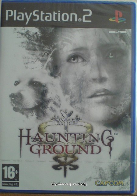 Haunting Ground small