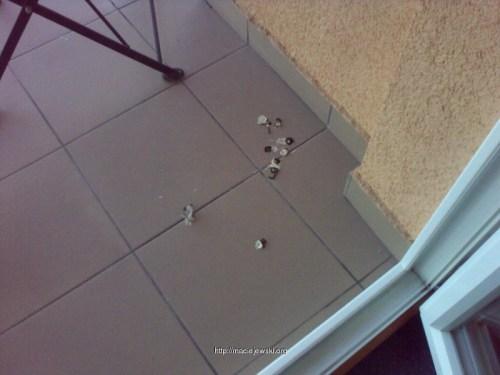 Obsrany balkon przez gołębie!
