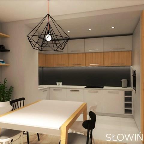 LIPOWA OSTOJA – widok na kuchnię