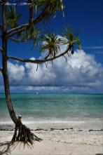 Zanzibar-Masajowie-Masajki-Ocean-Owoce-warzywa-plaża-ludzie-Małpka-Fot.Macie-18