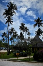 Zanzibar-Masajowie-Masajki-Ocean-Owoce-warzywa-plaża-ludzie-Małpka-Fot.Macie-20