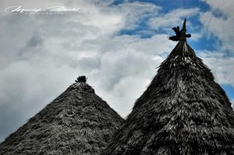Zanzibar-Masajowie-Masajki-Ocean-Owoce-warzywa-plaża-ludzie-Małpka-Fot.Macie-22