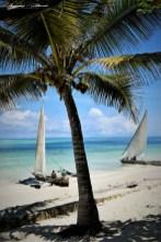 Zanzibar-Masajowie-Masajki-Ocean-Owoce-warzywa-plaża-ludzie-Małpka-Fot.Macie-27