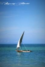Zanzibar-Masajowie-Masajki-Ocean-Owoce-warzywa-plaża-ludzie-Małpka-Fot.Macie-31