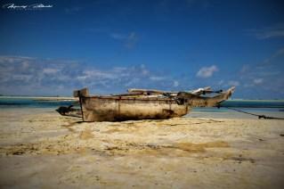 Zanzibar-Masajowie-Masajki-Ocean-Owoce-warzywa-plaża-ludzie-Małpka-Fot.Macie-40