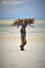 Zanzibar-Masajowie-Masajki-Ocean-Owoce-warzywa-plaża-ludzie-Małpka-Fot.Macie-43