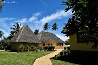 Zanzibar-Masajowie-Masajki-Ocean-Owoce-warzywa-plaża-ludzie-Małpka-Fot.Macie-5
