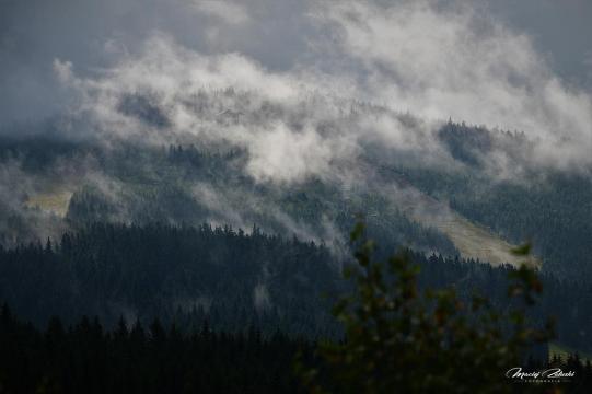Śnieżnik masyw Śnieżnika, Czarna Góra