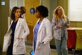 Grey's Anatomy, 12x23 (1)