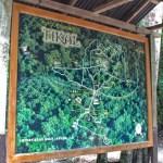 Tikal National Park, Map, Tikal