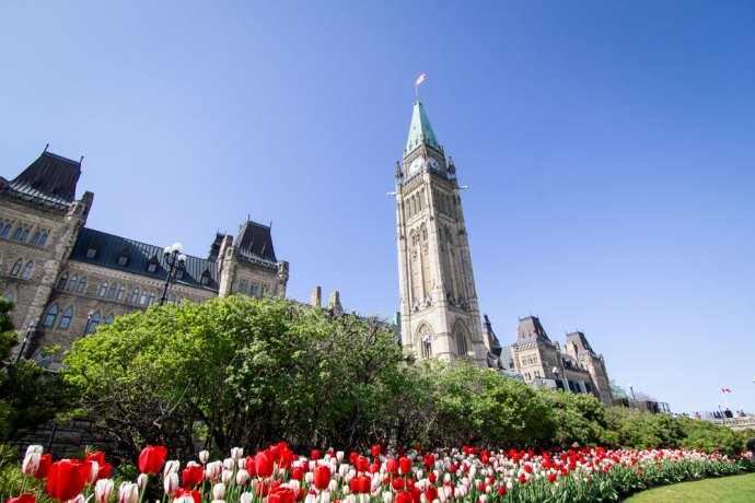 Parliament Hill, Ottawa, Tulip Festival