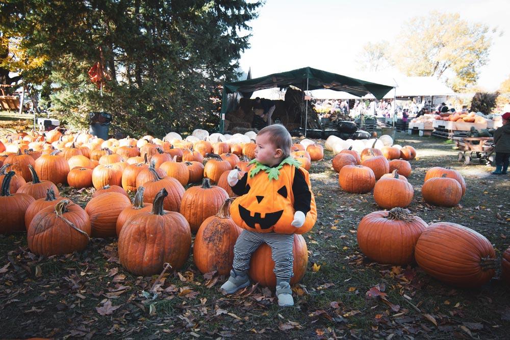baby, pumpkin, costume