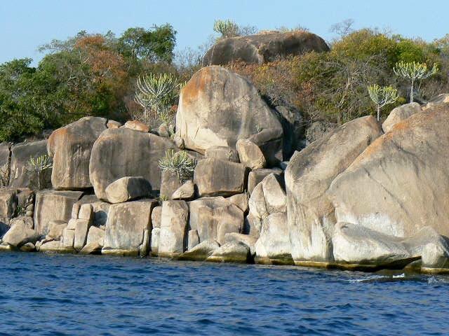 Typical rocks & vegetation -- Lake Tanganyika