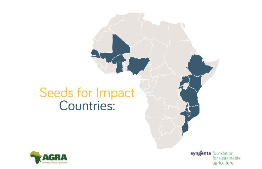 Seeds for Impact