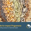 Seeds for Impact West Africa