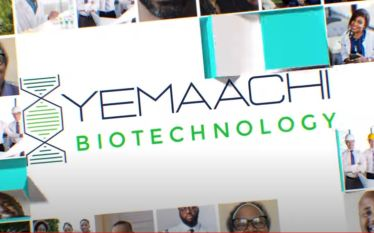 Ghana's Yemaachi Biotechnology Selected for 2021 Y Combinator Summer Cohorts