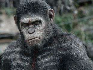 "Caesar (Andy Serkis) has grown from his days as leader of a primate rebellion in 2011's 'Rise of the Planet of the Apes.' ""We see him as a statesman and a leader and someone who has galvanized all of these apes,"" says Serkis. ""We see the beginning of their world."" Director Matt Reeves is impressed by Caesar's care-worn face. ""You can see a real haunted quality."""