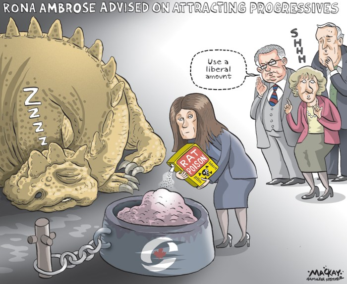 "By Graeme MacKay, Editorial Cartoonist, The Hamilton Spectator - Thursday December 3, 2015 Rona Ambrose reaches out to former Tory prime ministers for advice on leadership race Interim Conservative leader Rona Ambrose has been seeking advice from former Tory prime ministers, who told her the party should be making sure Progressive Conservatives feel welcome. In the past few weeks, Ambrose has spoken to Brian Mulroney, Joe Clark and Kim Campbell, and to former Reform Party leader Preston Manning. All agreed that the party shouldn't rush a leadership race, she said in an interview. The party's governing body is on the verge of forming a leadership committee, and making initial decisions about the time frame for the race. An internal consensus has emerged that the vote not happen for some time - 18 months from now or longer, Ambrose said. ""It's been a decade of the Conservative Party of Canada but we have a long legacy of conservatism in our conservative movement, and we're moving forward for the first time in a decade into a leadership race,"" she said. ""We want to get it right, and I've sought their advice on how to make sure we do that. The consensus was very clear, that we should take our time..."" She said Mulroney and Clark in particular emphasized that the party should signal that it is open to all types of conservatives - a direct reference to Progressive Conservatives who might have felt alienated in recent years. Former leader Stephen Harper had a mercurial relationship with Mulroney, and little contact with Clark, who had opposed the merger of the Canadian Alliance and Progressive Conservative parties. "" 1/8 The advice 3/8 was, 'Make sure that you open up the welcome, or open up your arms to those who may have felt that they weren't part of the party in the past, or felt they were on the sidelines, but feel that they're conservative and want to be a part of the party and want to be back in the middle of things,""' said Ambrose. Ambrose added that she"