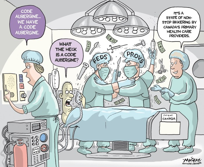 "Editorial Cartoon by Graeme MacKay, The Hamilton Spectator Ð Wednesday December 21, 2016 Ottawa, provinces fail to reach a deal on health spending Ottawa and the provinces have failed to reach a deal on health-care funding, despite a $11.5-billion pledge by the federal government to boost targeted spending on home care and mental health. The federal government has now taken that offer off the table, Finance Minister Bill Morneau said Monday, and the Canada Health Transfer (CHT) spending increase will revert to 3 per cent a year as of April 1, 2017. Morneau had told the provinces he was willing to grow that key federal transfer by 3.5 per cent each year over the next five years Ñ at a value of roughly $20 billion Ñ but the provinces balked. ""We came to the provinces with a significant offer of funds ... We're disappointed we weren't successful,"" Morneau told reporters. Jane Philpott, Canada's health minister, said the federal government's money could have made a real difference in the lives of many Canadians. ""I woke up this morning feeling very hopeful, thinking about half a million kids that are waiting for care for mental health services and hoping to be able to give them good news today,"" she said. ""We're disappointed that the provinces and territories did not feel like they could accept this offer and that they couldn't find ways to use these resources immediately, to be able to get care out to Canadians.Ó Ontario Finance Minister Charles Sousa said while the provinces rejected the federal funding plan, it was Morneau who was responsible for ending the meeting early. ""There was an urgency to close the meeting off. We're here, we desire an agreement, we need to come to a conclusion. Why have anybody attend if there's nothing to negotiate or discuss?"" Sousa said, adding Ottawa wasn't willing to listen to evidence that its proposed funding plan would imperil the country's health-care system. (Source: CBC News)Êhttp://www.cbc.ca/news/politics/health-accord"