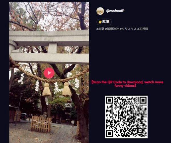 海外の人たちは神社とか鳥居が好きなようだ,tiktok【神社めぐり】