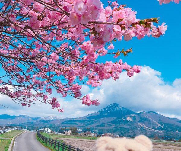猪苗代湖 磐梯山・令和最初の【東北さくらラリー】福島県