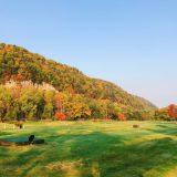 北海道の紅葉~層雲峡~紅葉ドライブ2019北海道,その3