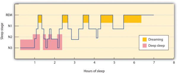 睡眠は最初の90分が命。昼間は体を活発に動かし、夜は静かに。風呂は寝る1時間ぐらい前に。