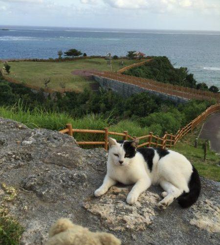 【沖縄】海岸線を2日で一周ドライブ、2015年10月、目次