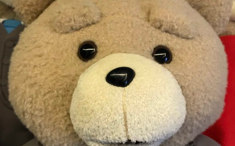 テッドが好きなら買うよね