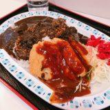 【チキンのミルフィーユ、カレー】ハイクオリティすぎで美味すぎる(・∀・)♪+.゚