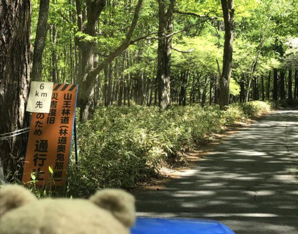 山王林道 通行止めだった 中禅寺湖から北上して川俣湖に向かうルート 解除未定 2020年6月