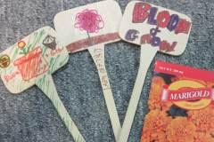 Bloom & Grow craft