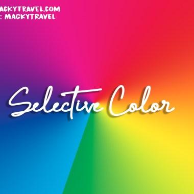 Selective Colors Lightroom Preset