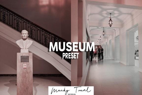 museum lightroom mobile preset