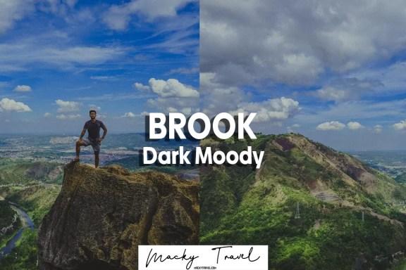 brook dark moody lightroom preset
