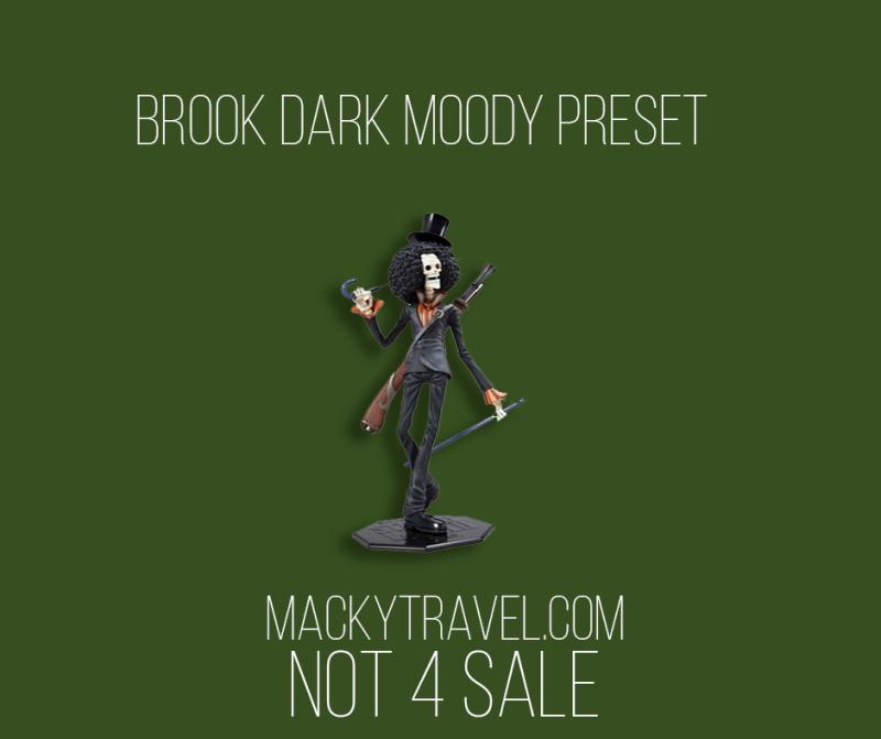 Brook Dark Moody Lightroom Mobile Preset